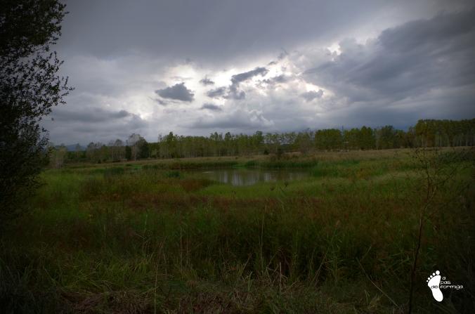 estanys-sils_apasdeformiga